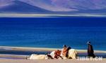 【砥砺奋进的五年】铸就生态屏障 守护天湖纳木错 - 中国西藏网