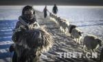 影像中的西藏风情 - 中国西藏网