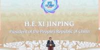 习近平新时代外交理念 这四方面笃行不变 - 中国西藏网