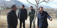 西藏自治区科技厅调研西藏自治区林木科学研究院 - 科技厅