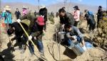 自治区工商局集中组织干部职工开展义务植树活动 - 工商局