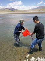 2018年雅江上游土著鱼类标本 采集工作顺利开展 - 科技厅