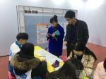 """扎西卓玛副校长深入""""大学生就业体验周""""活动现场指导工作 - 西藏民族学院"""